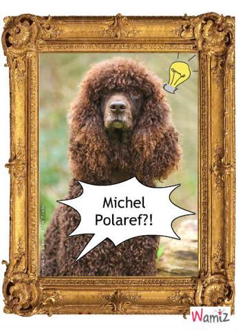 Michel Polnaref, lolcats réalisé sur Wamiz