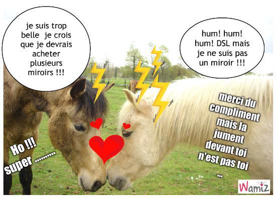 Miroir ou pas tooniz lolcats r alis sur wamiz for Casser un miroir
