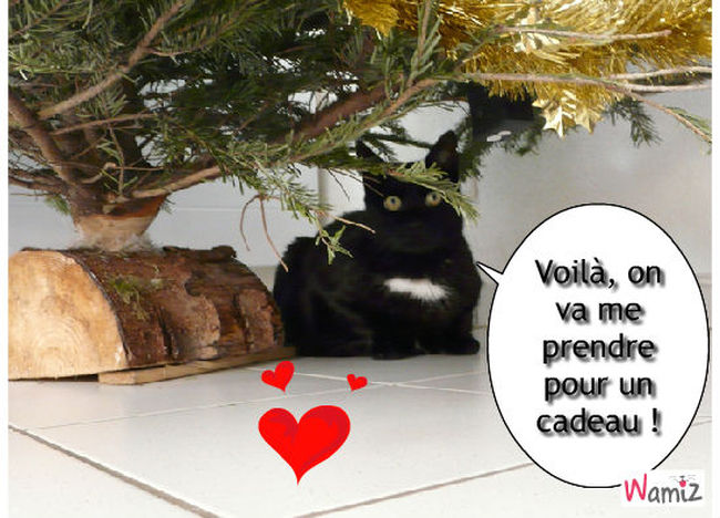 Noël 2011, lolcats réalisé sur Wamiz