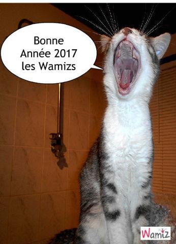 Nouvelle année, lolcats réalisé sur Wamiz