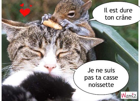 http://wamiz.com/images/comics/stuffed/large/nouvelle-casse-noissette-pour-un-ecureuil-79828.jpg