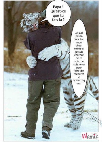 Papa humain et fils tigre blanc, lolcats réalisé sur Wamiz