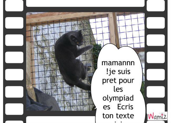participation aux jeux olympiques, lolcats réalisé sur Wamiz