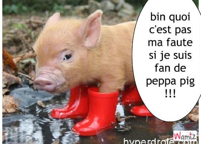 peppa pig, lolcats réalisé sur Wamiz