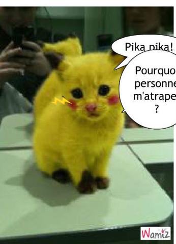 Pikachat, lolcats réalisé sur Wamiz