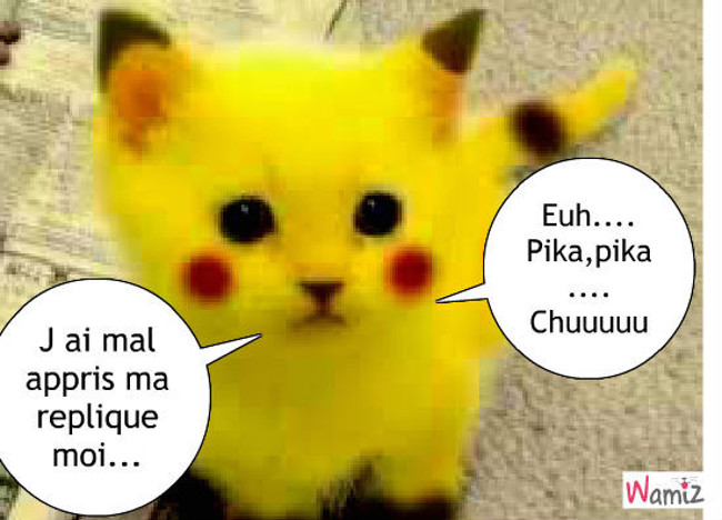 pikachu, lolcats réalisé sur Wamiz