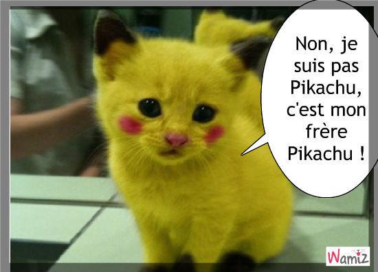 chat en francais Montrouge