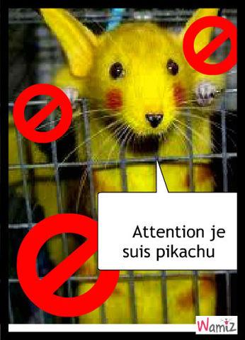 pikachuuu, lolcats réalisé sur Wamiz