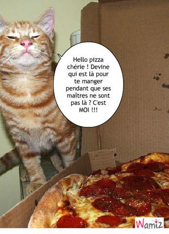 Pizza,pizza..., lolcats réalisé sur Wamiz
