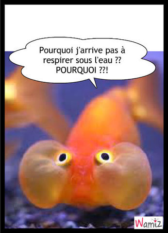 Pour qui aime farmerama hit page 967 farmerama fr - Poisson rouge rigolo ...