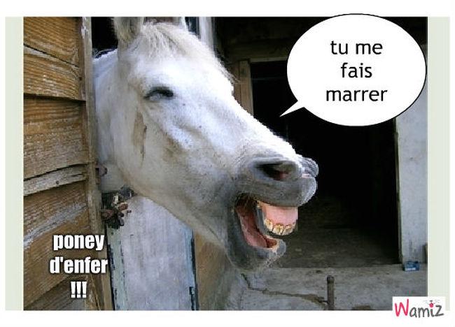 poney d'enfer !!!, lolcats réalisé sur Wamiz
