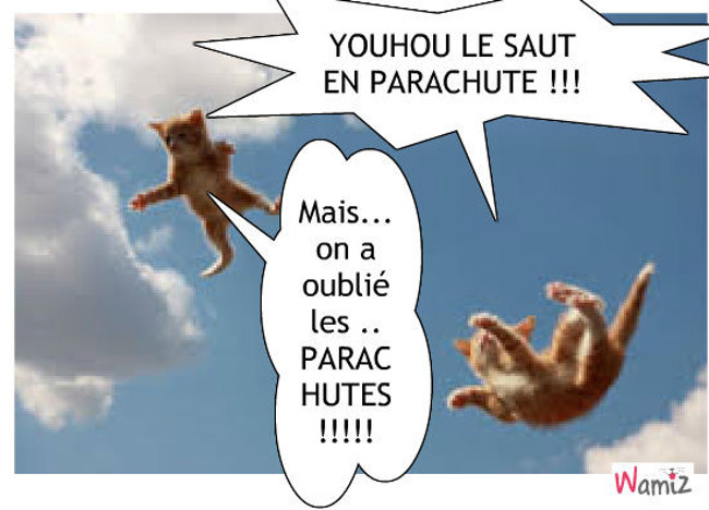 Quand ta pas de parachute ..., lolcats réalisé sur Wamiz