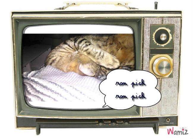 que c est bon de dormir , lolcats réalisé sur Wamiz