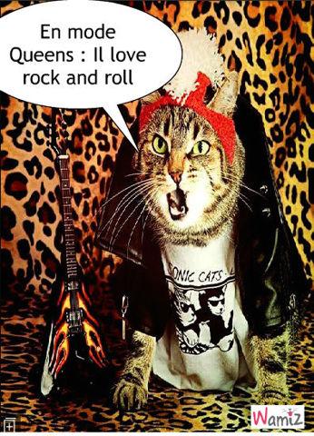 Rockeur, lolcats réalisé sur Wamiz