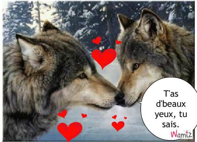 Roméo et Juliette version animale, lolcats réalisé sur Wamiz