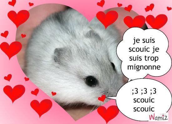 scouic la plus des hamsters russe!, lolcats réalisé sur Wamiz