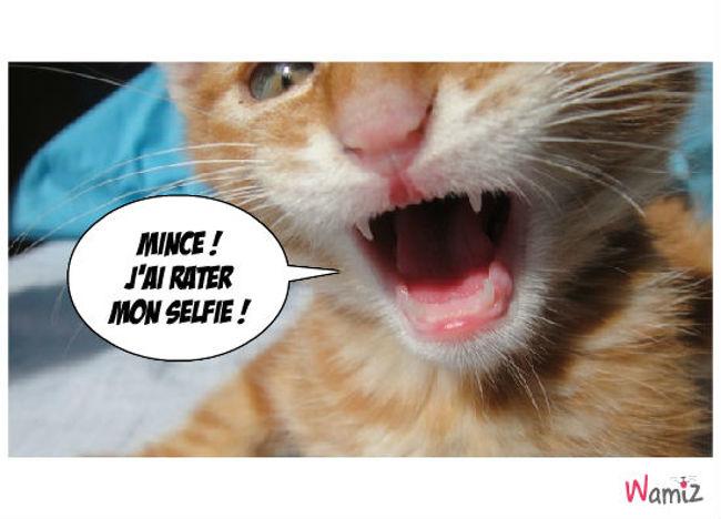 Selfie , lolcats réalisé sur Wamiz