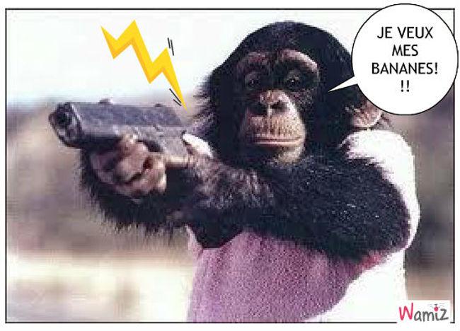 singe et les bananes, lolcats réalisé sur Wamiz