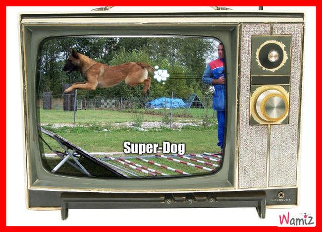 Super-Dog, lolcats réalisé sur Wamiz