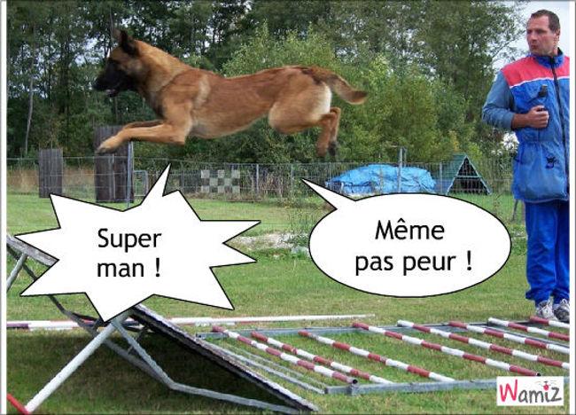 super dog, lolcats réalisé sur Wamiz