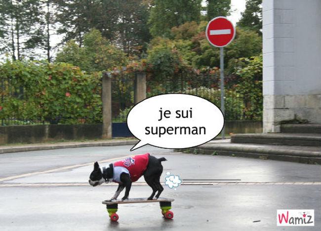 superman, lolcats réalisé sur Wamiz