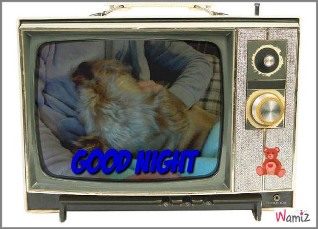 Sweet Night, lolcats réalisé sur Wamiz