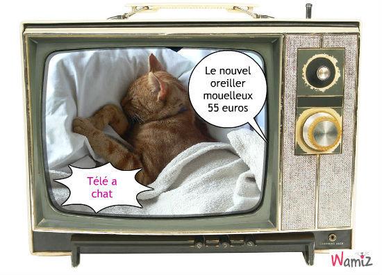 Télé achat (a chat), lolcats réalisé sur Wamiz