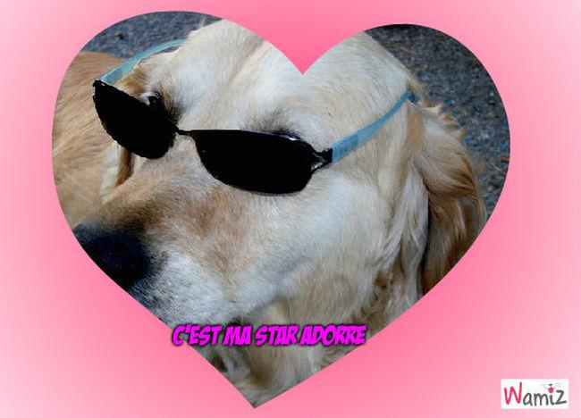 The dog, lolcats réalisé sur Wamiz