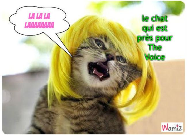 The Voice cat, lolcats réalisé sur Wamiz