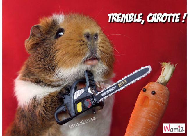 Tremble, carotte !, lolcats réalisé sur Wamiz