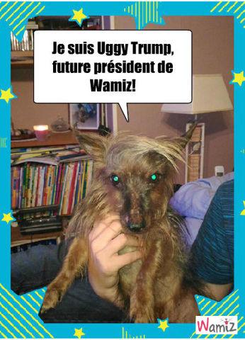 Uggy Trump, lolcats réalisé sur Wamiz