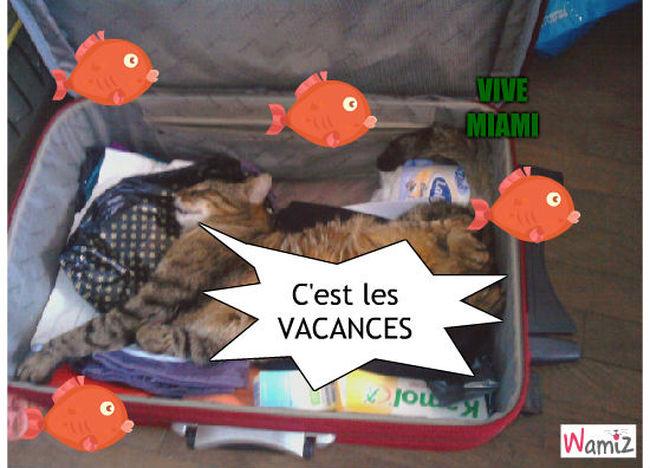 vacances !!!!!, lolcats réalisé sur Wamiz