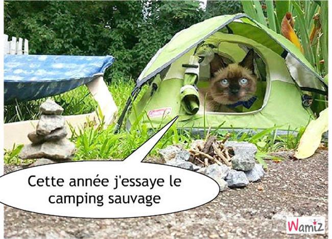 Vacances au camping, lolcats réalisé sur Wamiz