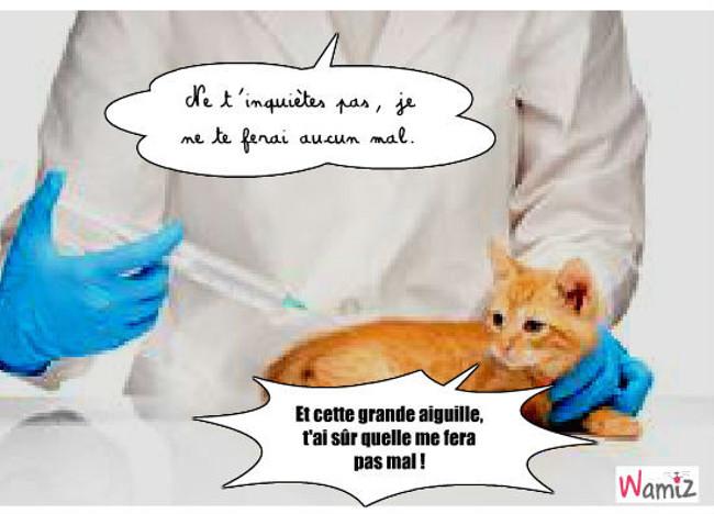 Vaccin inatendu, lolcats réalisé sur Wamiz