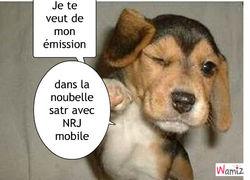 Tchat nrj mobile. La datation.