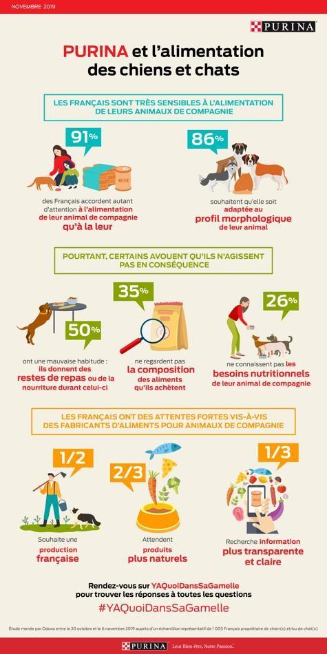 91% des Français accordent autant d'importance à l'alimentation de leur animal qu'à la leur