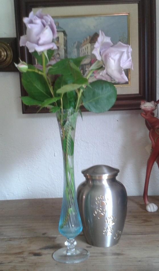 Photo de l'urne du chien, avec des fleurs