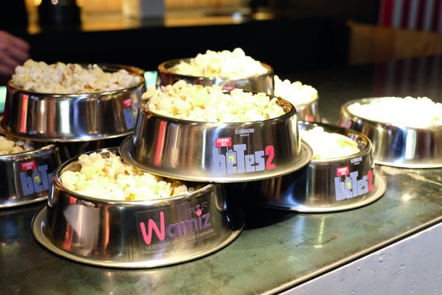 Comme des bêtes 2 : 60 chiens stars au cinéma pour une avant-première totalement dingue !