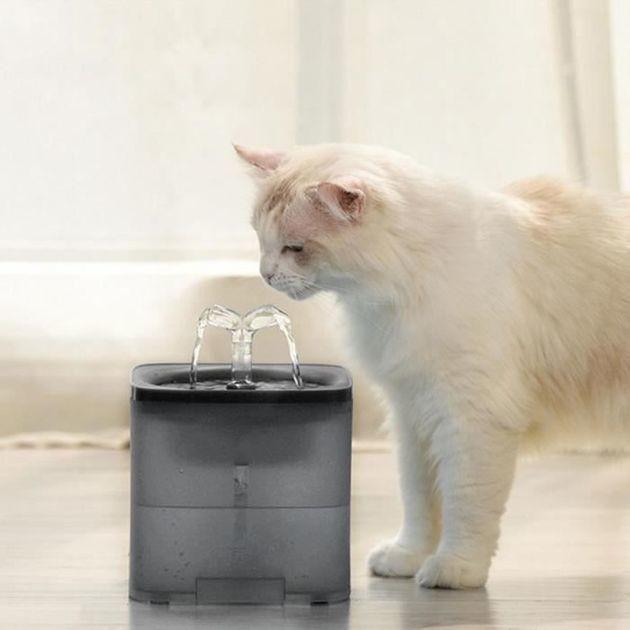 40% de réduction : la fontaine à eau pour chat avec un réservoir de 2 litres