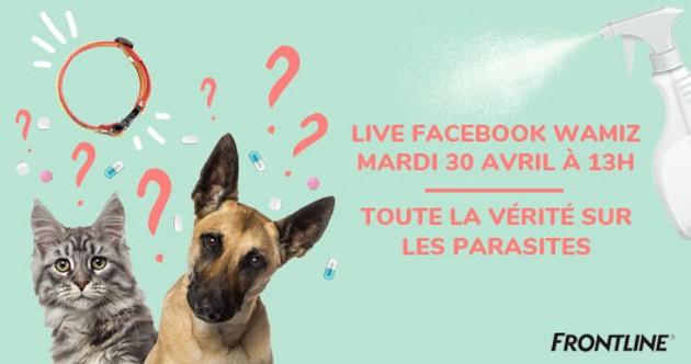 live facebook frontline