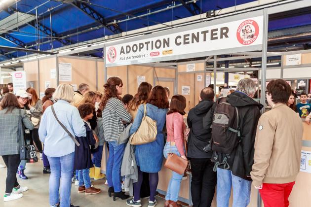 Salon Animal Expo & Animalis 2021 : rendez-vous les 2 et 3 octobre pour la 30ème édition anniversaire