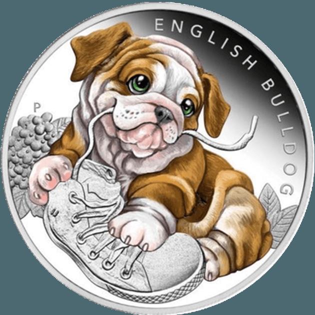 Pièce en argent Bulldog
