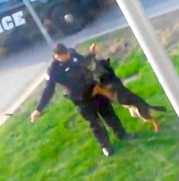Policier maltraitant son animal
