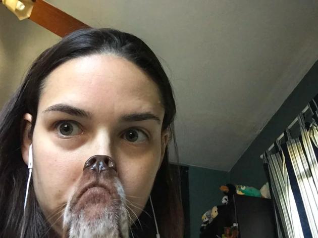 Son chien fait mieux que les filtres Snapchat