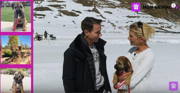 Gérald Ariano : « J'ai lancé Mon Animal TV pour répondre aux questions que tout le monde se pose sur les animaux de compagnie ! »