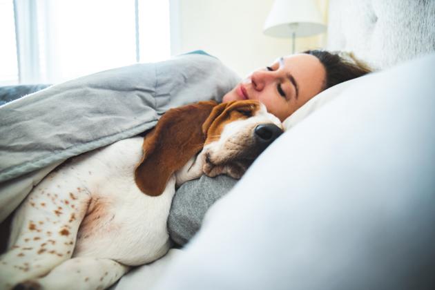 Le chien est le meilleur ami de l'Homme… enfin de la femme surtout !