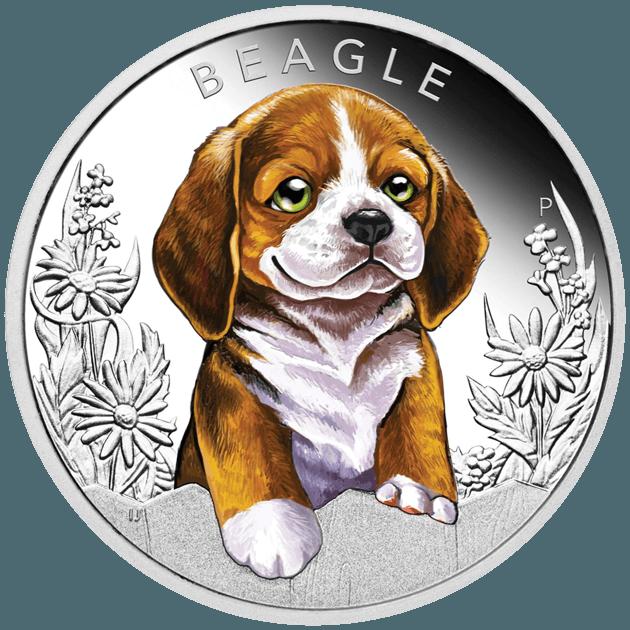 Pièce en argent beagle