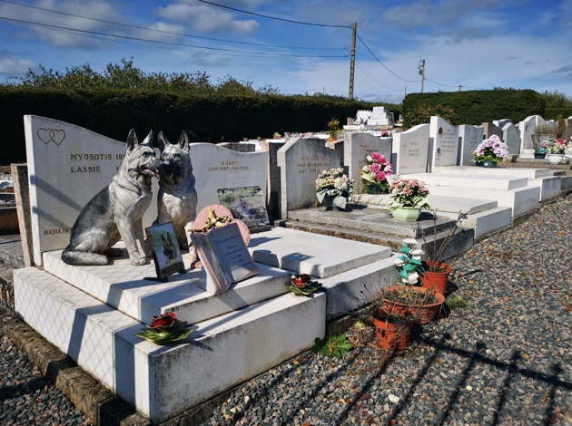 Cimetières pour animaux : tout ce qu'il faut savoir pour dire adieu à son compagnon