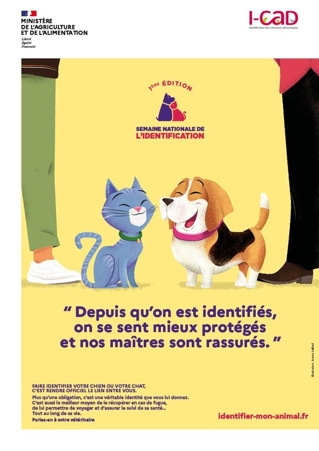 Maxi Zoo s'associe à l'I-CAD et au Ministère de l'Agriculture pour la Semaine Nationale de l'Identification des chiens et des chats