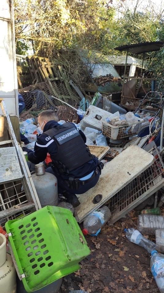 Policier qui cherche un animal dans les déchets